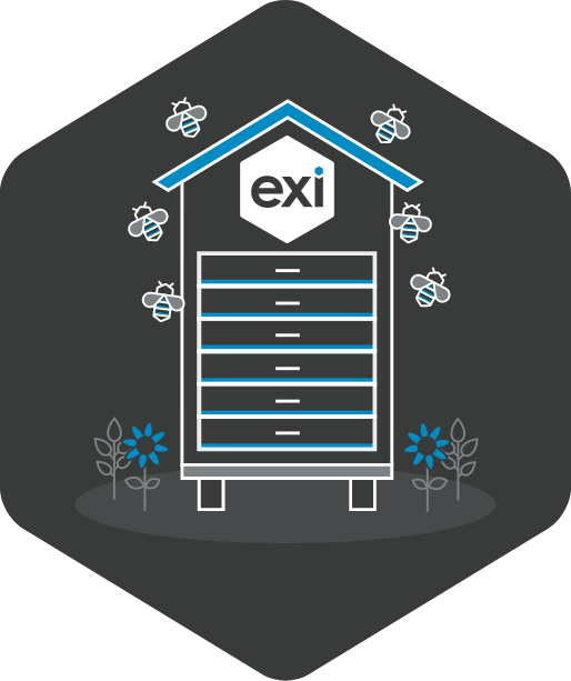 Exi is Born.